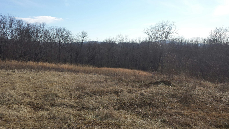 Perfect Lots for your Perfectly New Custom Home in Frederick County, MD!
